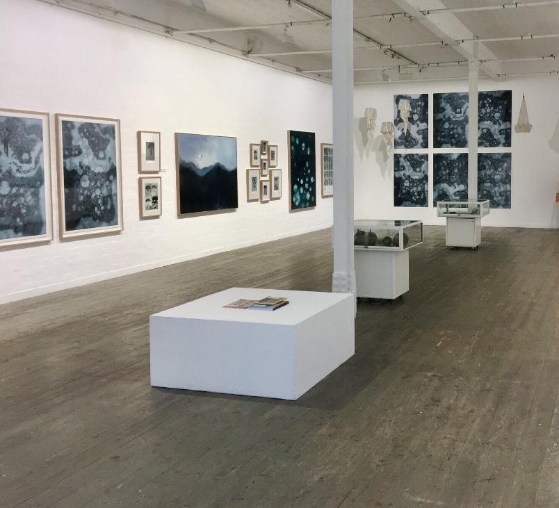 Gallery art installation by Tom Ellis of Ellis Art Installation. Image of Lisa Sewards exhibition at FortyFive Downstairs.